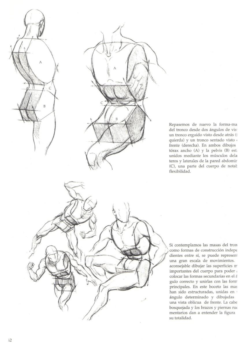 libro el gran libro de la figura humana descargar gratis pdf