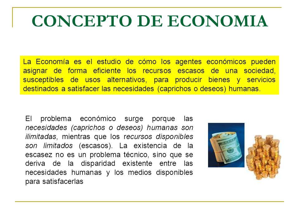 libro como comprender los conceptos basicos de la economia