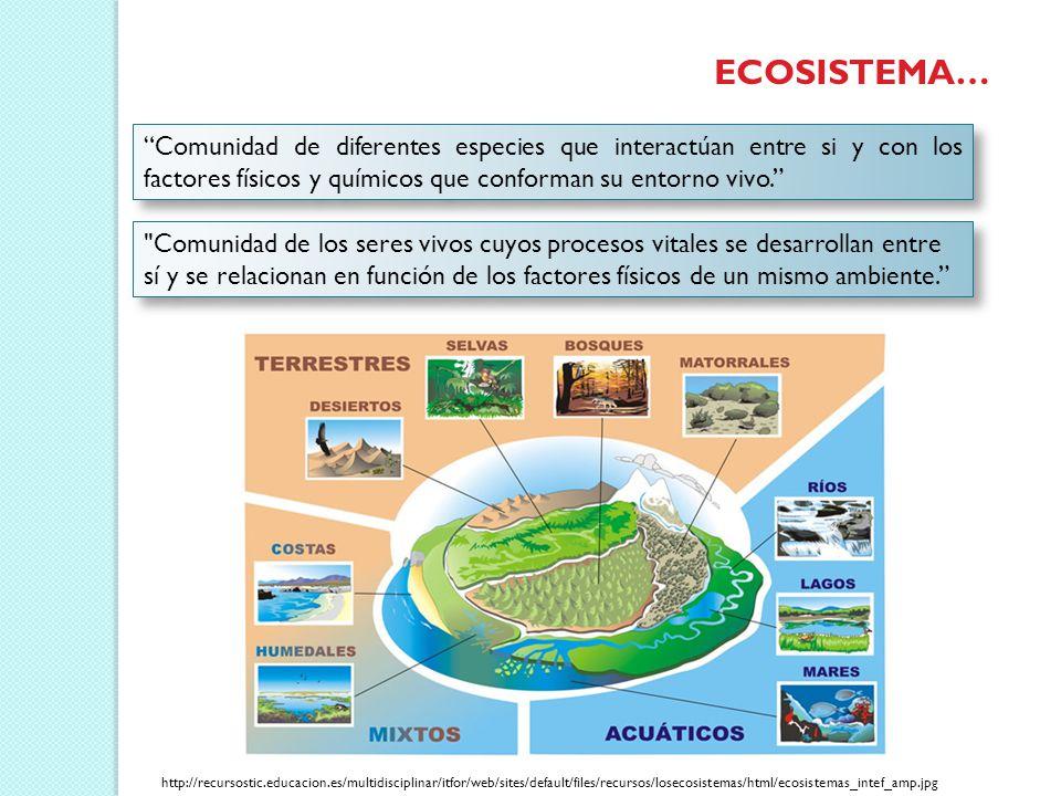 Libro El Pulso Del Planeta: Biodiversidad, Ecosistemas Y